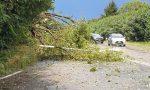 Tempesta devasta l'Adda e la Martesana FOTO e VIDEO