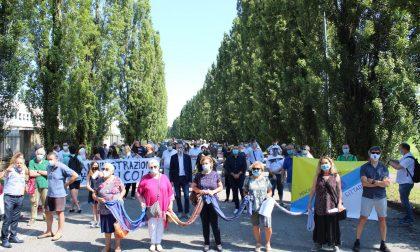 Oltre centocinquanta persone in presidio a Peschiera per salvare gli alberi dalle motoseghe del Comune FOTO e VIDEO