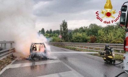 Auto in fiamme sul cavalcavia della Cerca FOTO