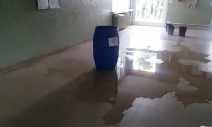 """Sopralluogo di Ats nella scuola che """"fa acqua"""""""