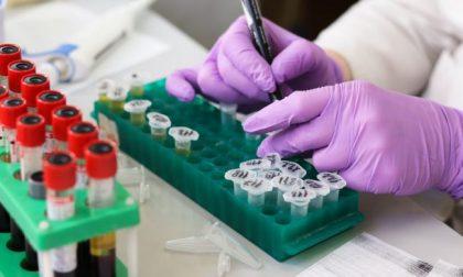 Coronavirus:  dove e quanto sono aumentati i casi negli ultimi 2 mesi in Martesana COMUNE PER COMUNE