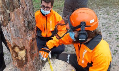 Tute gialle da tutta la Martesana a lezione di emergenza a Cassina de' Pecchi
