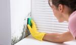 A chi affidarsi per eliminare l'umidità in casa