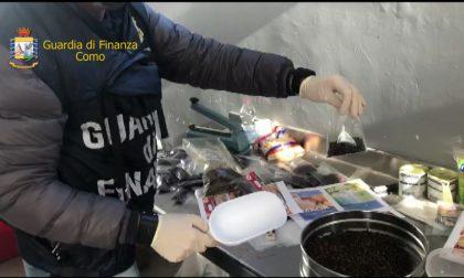 Nove tonnellate di prodotti mal conservati tra vermi e insetti scoperte dalla Finanza FOTO E VIDEO