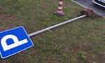 Danneggia la segnaletica stradale, 15enne denunciato