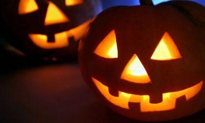 Organizzano una festa in casa per Halloween, 20 denunciati