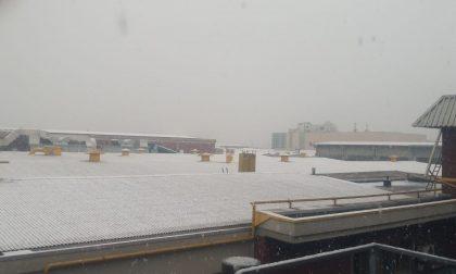 Campi e tetti imbiancati: in Martesana è arrivata la neve