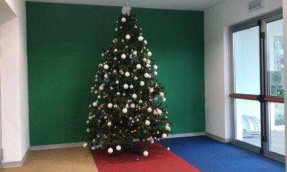 Albero di Natale della Apple a scuola a Melzo: scoppia la polemica
