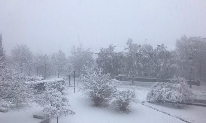 E' arrivata la neve! LE VOSTRE FOTO