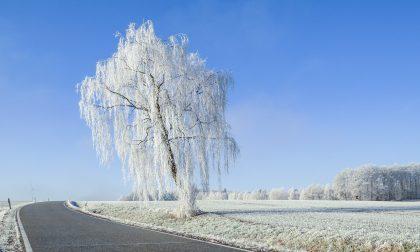 Neve a Capodanno? Forse, ma nel caso pochissimi centimetri   Previsioni Meteo Lombardia