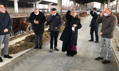 Arcivescovo di Milano in visita alle aziende agricole dall'Adda Martesana FOTO