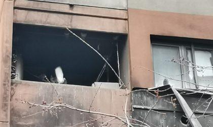Incendio in un appartamento Aler a Cernusco sul Naviglio, dopo un anno la casa è abitata dai piccioni
