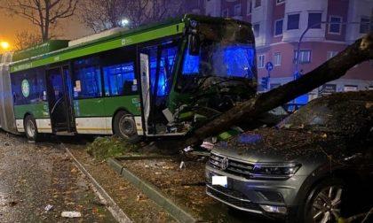 Autobus si schianta contro le auto parcheggiate