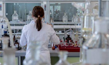 Coronavirus, 7 varianti virali già nella prima fase della pandemia