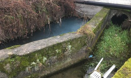 C'è una perdita nei tubi: l'acqua del canale diventa grigia