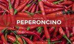 Tutti ortisti: da sabato 6 marzo in edicola con la Gazzetta della Martesana e la Gazzetta dell'Adda i semi di peperoncino