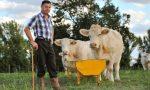 Programma di sviluppo rurale,  in Lombardia assegnato il 98% delle risorse