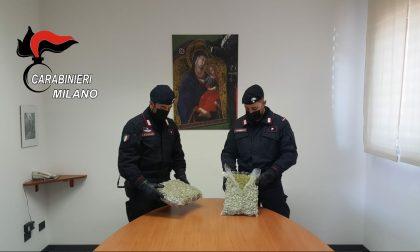 Tentano la fuga dopo aver incrociato i Carabinieri: in macchina avevano 2 chili di marijuana