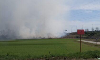 Incendio nei campi, il fumo invade Cerca e Cassanese