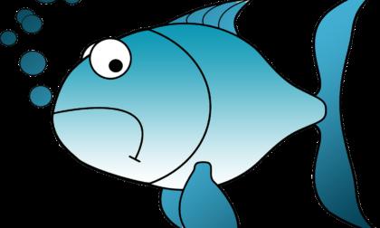 Pesce d'aprile 2021: scherzi e idee divertenti in lockdown per gli amici