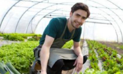 L'impegno di Cariplo per un'agricoltura sostenibile
