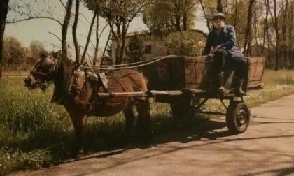 Col cavallino e il carretto incantava i bambini, addio al Babbo Natale Aurelio Cremascoli