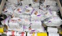 Canile derubato, un anonimo dona mille euro