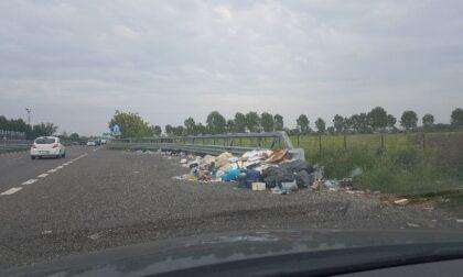 """Nessuno raccoglie i rifiuti sulla Rivoltana. I cittadini lanciano la provocazione: """"Piuttosto puliamo noi"""""""