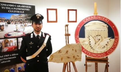 I Carabinieri per la Tutela del Patrimonio Culturale restituiscono alla Repubblica Libanese reperti fossili antichissimi