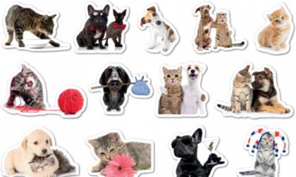 Da sabato 19 giugno originali stickers in regalo con la Gazzetta