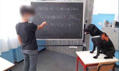 """Studenti  all'esame con il cane """"Dafne"""""""