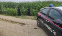 Trovate morte nei campi due donne investite da una mietitrebbia