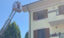 Uccello intrappolato in una grondaia: salvataggio ad alta quota dei pompieri